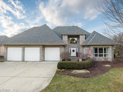 Naperville Single Family Home For Sale: 1201 Fox Trail Court