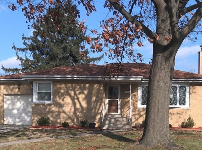 Single Family Home For Sale: 2205 Tyson Drive