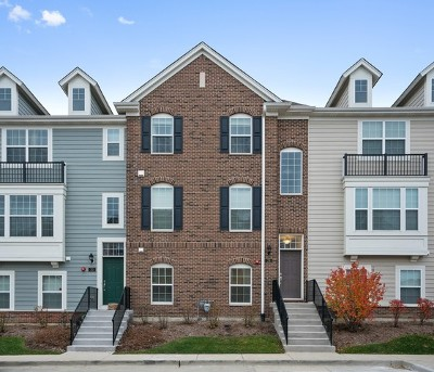 Schaumburg Condo/Townhouse For Sale: 29 Marcel Lane