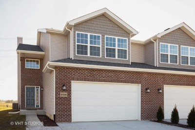 Channahon Condo/Townhouse New: 27235 Deer Hollow Lane