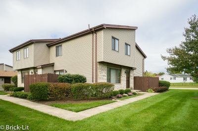 New Lenox IL Condo/Townhouse New: $159,900