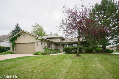 Mokena IL Single Family Home New: $286,900