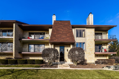 Palos Heights, Palos Hills Condo/Townhouse For Sale: 9169 Del Prado Drive #1W