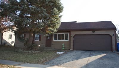 Carpentersville Single Family Home New: 219 Bolz Road