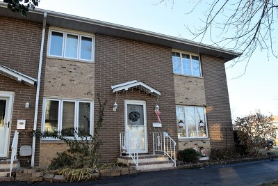 Lockport Condo/Townhouse New: 613 East 3rd Street #1