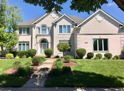 Naperville Single Family Home For Sale: 2603 Newton Avenue