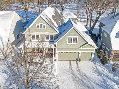 Glen Ellyn Single Family Home For Sale: 928 Waverly Road