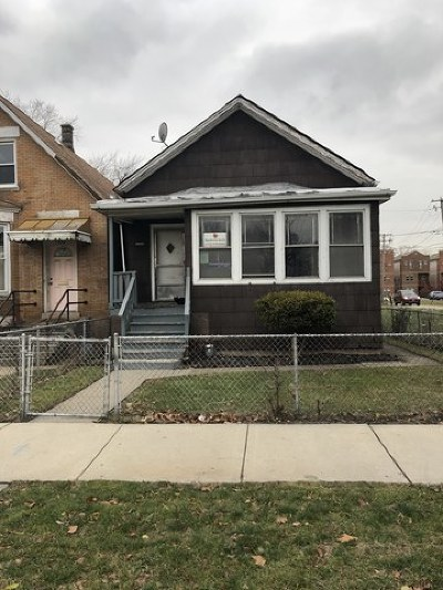 Chicago Single Family Home New: 7916 South Normal Avenue