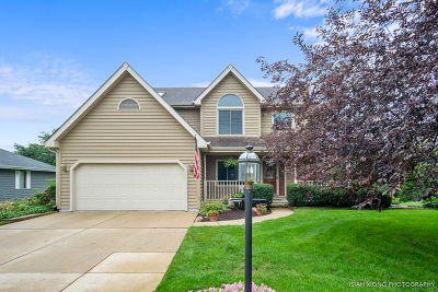 Yorkville IL Single Family Home New: $313,500