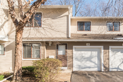 Palatine Condo/Townhouse New: 1188 East Cunningham Drive