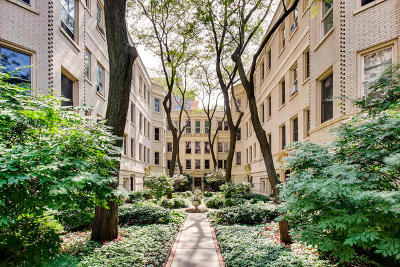 Chicago IL Condo/Townhouse New: $289,000