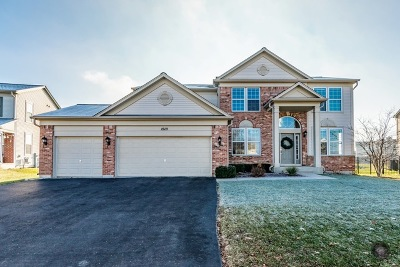 Lockport Single Family Home For Sale: 15111 West Albright Drive