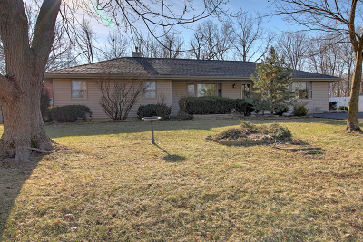 Plainfield Single Family Home For Sale: 23315 West Grinton Drive