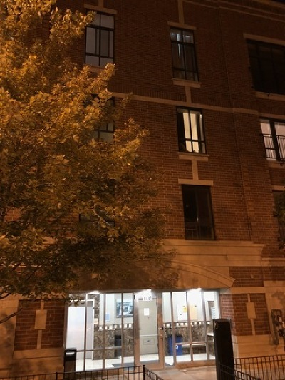 Condo/Townhouse New: 1440 South Wabash Avenue #201
