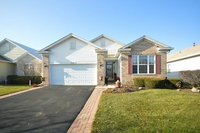 Romeoville Single Family Home For Sale: 700 South Mecosta Lane