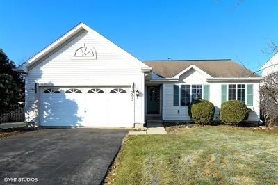 Grayslake Single Family Home New: 1305 Fairport Drive