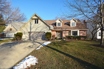 Grayslake Single Family Home For Sale: 516 Laurie Court