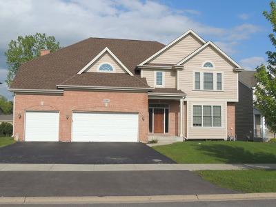 Palatine Rental New: 1320 North Deer Avenue