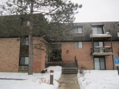 Buffalo Grove Condo/Townhouse New: 5 Oak Creek Drive #3101