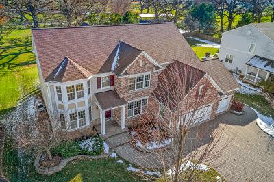 Mc Henry County Single Family Home New: 11320 Fitzgerald Lane