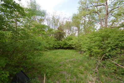 Braidwood Residential Lots & Land For Sale: 557 North Railroad Street