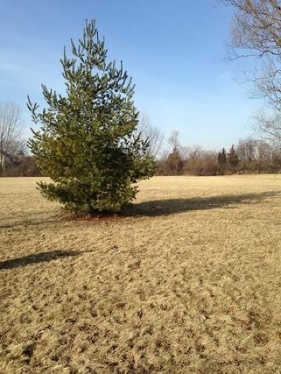 Mc Henry County Residential Lots & Land New: Lot 3 Pheasant Drive