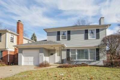 Arlington Heights Single Family Home For Sale: 539 South Ridge Avenue