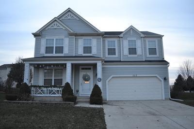 Joliet Single Family Home New: 1017 Misty Brook Lane