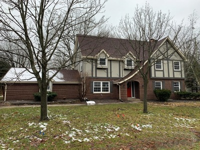 Crete Single Family Home For Sale: 24146 South Walden Lane