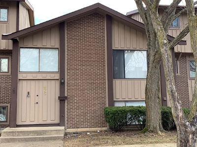 Roselle Condo/Townhouse New: 675 Circle Drive