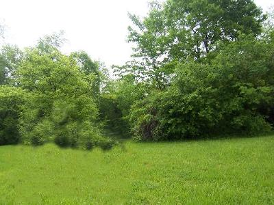 Joliet Residential Lots & Land For Sale: 712 Wildwood Drive