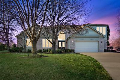 Highland Park Single Family Home For Sale: 1703 Violet Court