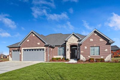Homer Glen Single Family Home For Sale: 15709 South Jeanne Lane