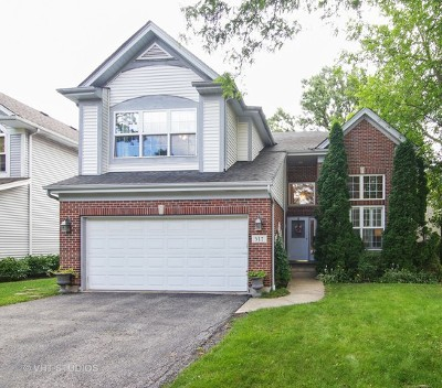 Highland Park Single Family Home New: 317 Ridge Road