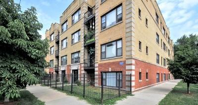 Condo/Townhouse New: 2704 West Cortland Street #2