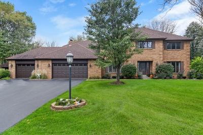 Naperville Single Family Home For Sale: 23w300 Kimberwick Lane