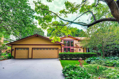 Naperville Single Family Home New: 786 East Gartner Road