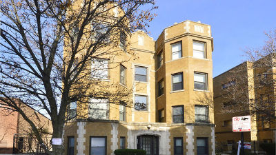 Cook County Condo/Townhouse New: 710 West Wellington Avenue #1