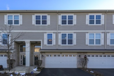 Carol Stream Condo/Townhouse For Sale: 491 Norwick Lane