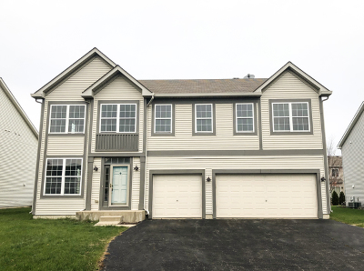 Bartlett IL Single Family Home For Sale: $359,900