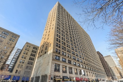 Chicago Rental New: 600 South Dearborn Street #307