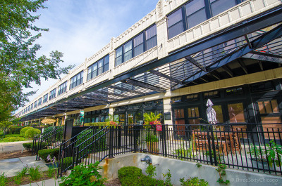 Chicago Rental New: 1000 West 15th Street #217