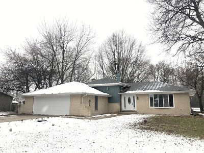 Naperville Single Family Home New: 28w730 Leverenz Road