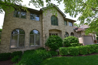 Orland Park Single Family Home For Sale: 17348 Deer Creek Drive