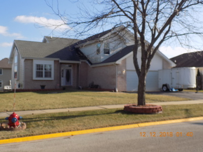 Monee Single Family Home New: 25815 South Sunrise Court