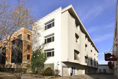 Chicago Condo/Townhouse New: 2231 North Lister Avenue #E