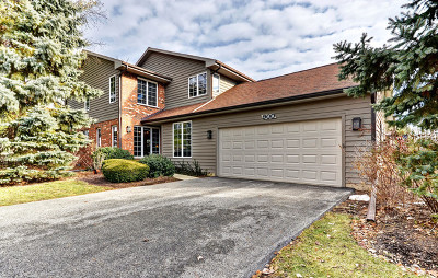 Glen Ellyn Condo/Townhouse For Sale: 900 Saddlewood Drive