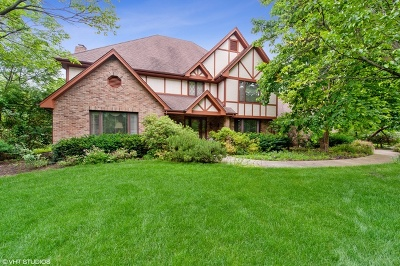 Naperville Single Family Home New: 8524 Una Avenue