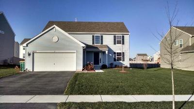 Joliet Single Family Home New: 1811 Flagstone Street