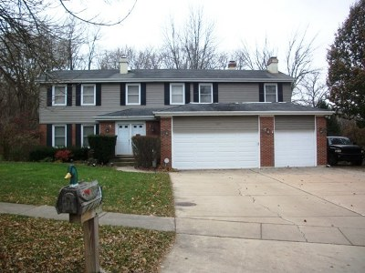 Bolingbrook Single Family Home New
